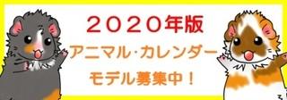 2020_ca_b.jpg