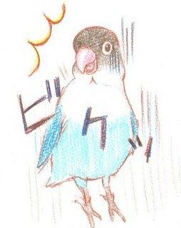 uchiwa02_.jpg